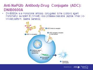 Meeting Library | Developments in the Use of Antibody-Drug Conjugates